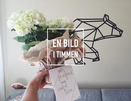 isabel-boltenstern-en-bild-i-timmen