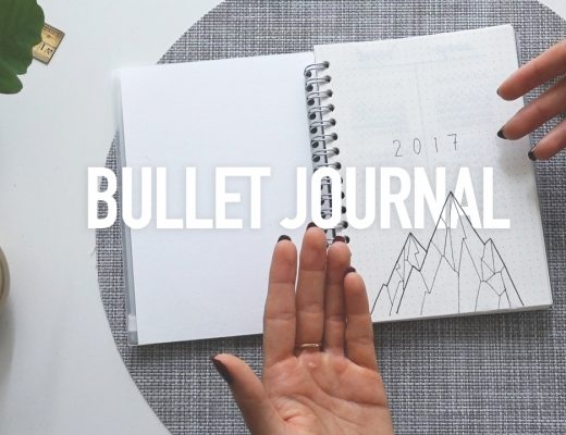 isabel-boltenstern-bullet-journal-svenska1